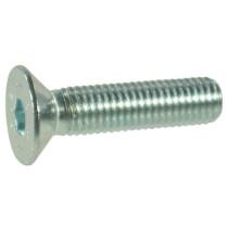 Koonuspolt M8x1,25-20 10,9 DIN7991