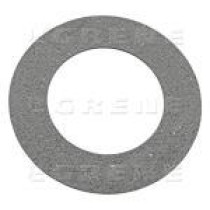 Berzes disks 160x97x3,5mm